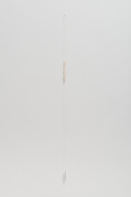 , 'Untitled,' 2012, Galeria Luisa Strina