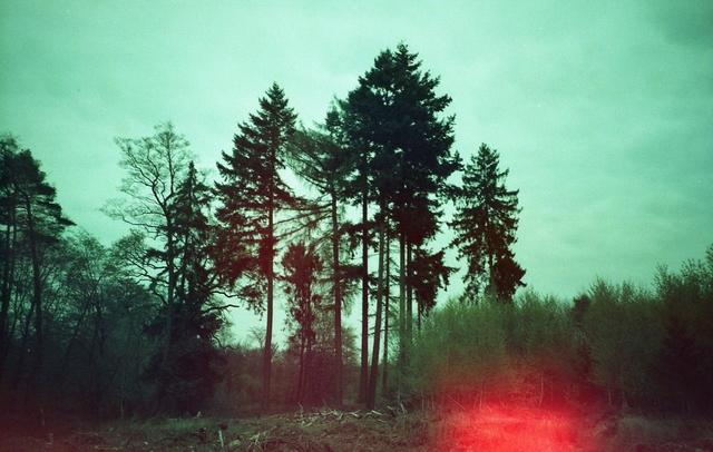 Julia Beyer, 'Where My Heart Belongs II', 2017, Photography, Digital C-Print based on a 35mm film photo, Instantdreams