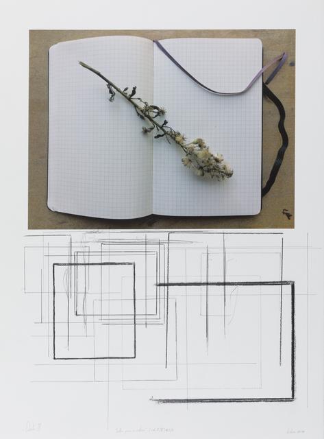 """, '""""notas para o outono"""" (col. I/V) #2/8,' 2018, Galeria Miguel Nabinho"""
