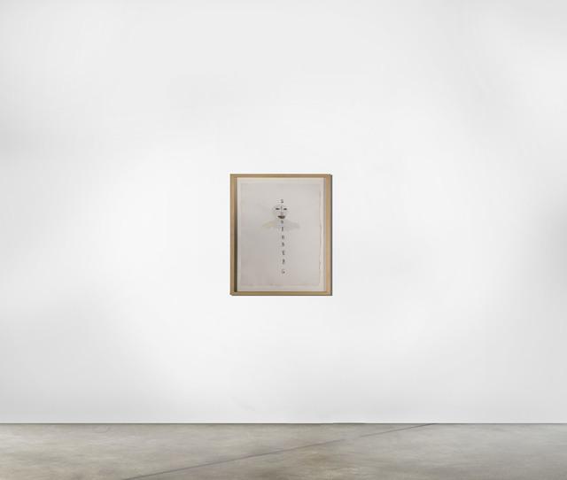 , 'Schoenberg ,' 2007, The Hue