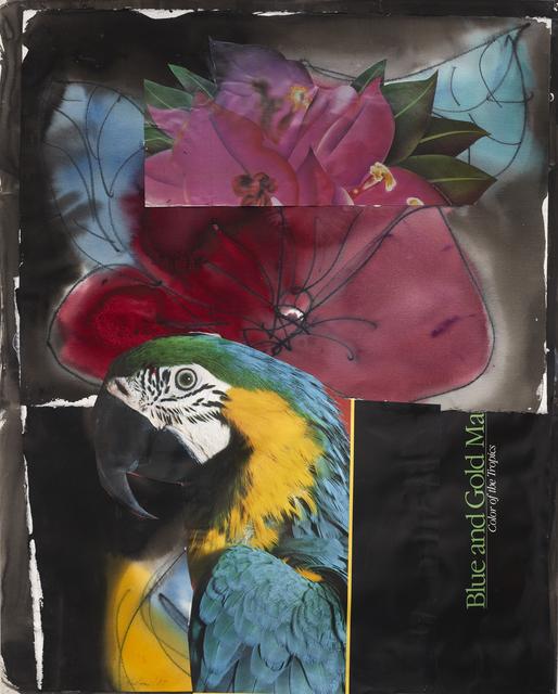 , 'Fischer Island,' 1987, ACA Galleries