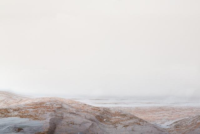 Laura Plageman, 'Pacific Grove (Study No. 1)', 2014, Photography, Digital pigment print, De Soto Gallery