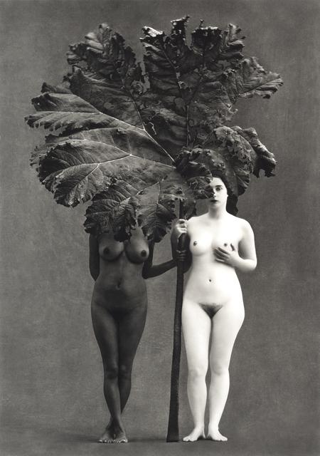 Flor Garduño, 'Edén, Suiza', 2001, Photography, Giclee carbon print, DIGARD AUCTION