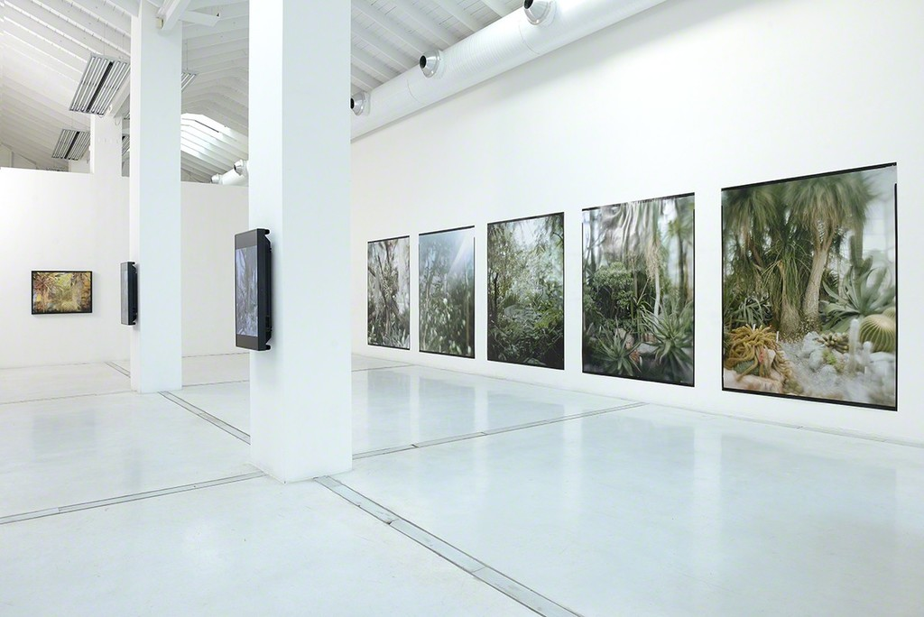 installation view, photo Michele Alberto Sereni, courtesy Studio la Città - Verona