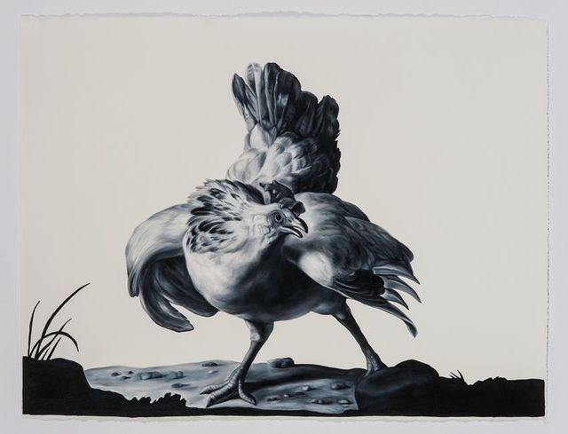 , 'Hen (after Hondecoeter),' 2016, Sears-Peyton Gallery
