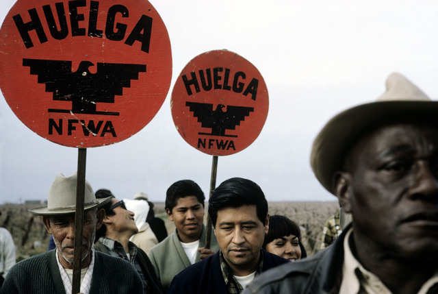 , 'National Farm Workers Association (NFWA), picketing outside of a farm. California, USA.,' 1966, Magnum Photos