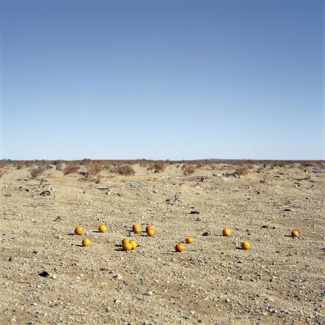 , 'Discarded #9, 2013 ,' 2013, Galerie Thomas Zander