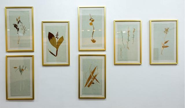 Maria Jose de la Macorra, 'Embroidered Herbarium', 2017, GALERÍA ETHRA