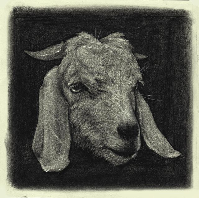, 'Goat,' 2017, AFA Gallery