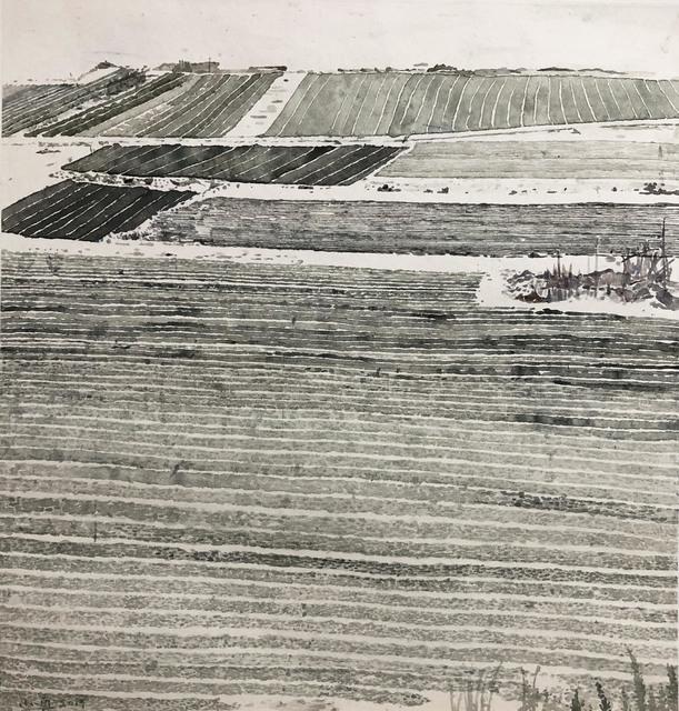 , 'Fields,' 2019, AROUNDSPACE GALLERY
