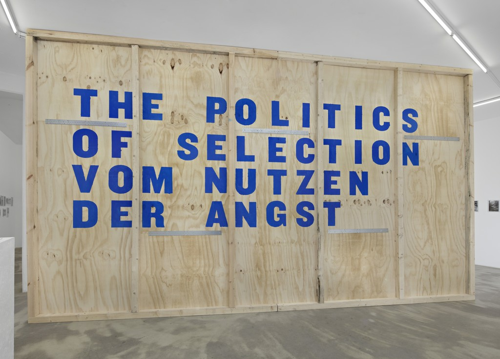 Peggy Buth, The Politics of Selection – Vom Nutzen der Angst, 2015, wall installation, dimensions variable