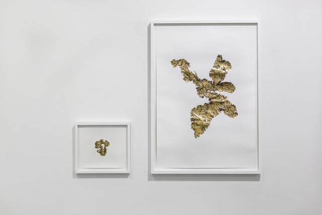 , 'Fiebre del oro serie,' 2019, Instituto de Visión