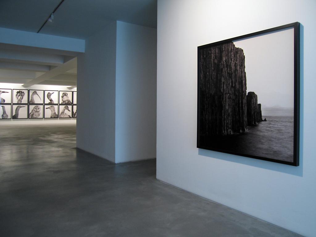 Manuel Vilariño   Mitologías (solo show at Carlos Carvalho gallery)  03/19-05/03 2014