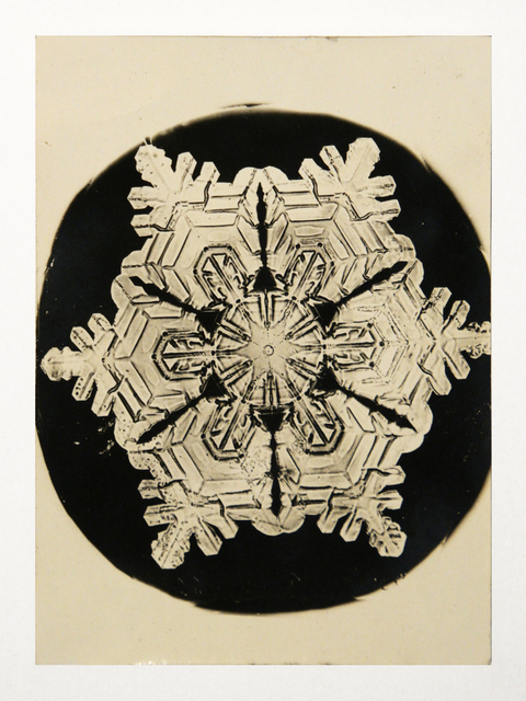 Wilson A. Bentley, 'Snowflake', 1888, Richard Levy Gallery