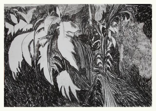 """, 'Sin título, de la serie """"Boceto para la construcción de un paisaje. La Laguna de Zempoala 1965/2010,' 2015, Ignacio Liprandi Arte Contemporáneo"""