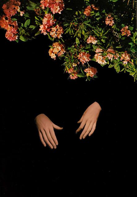 , 'caste shadows,' 2016, Helikon Gallery & Studios