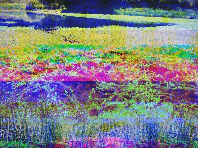 , 'Point Reyes Lake,' 2014, Spotte Art