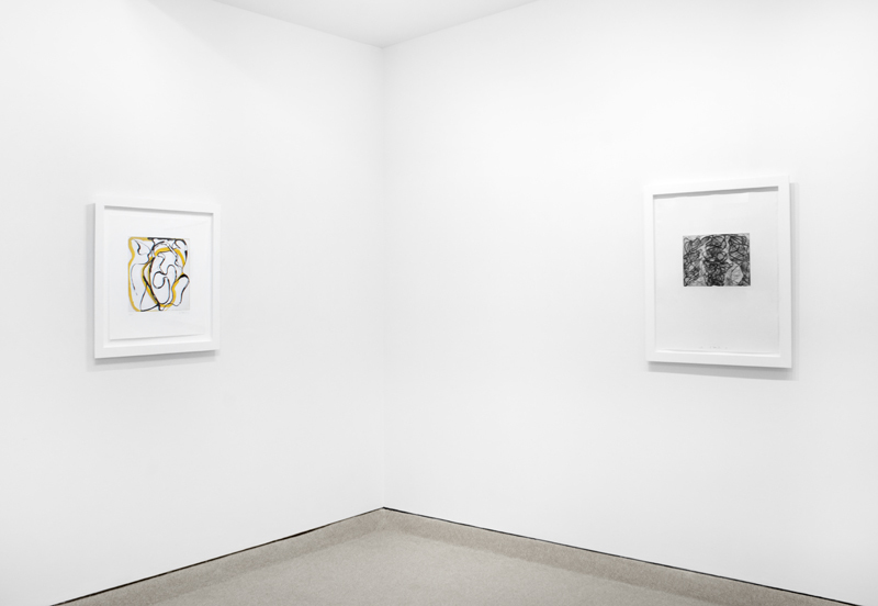 Installation view from BRICE MARDEN: Prints from 1972 to 1998