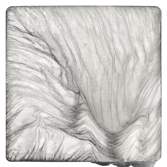 , 'Gelatin Silver 5,' 2013, David Klein Gallery