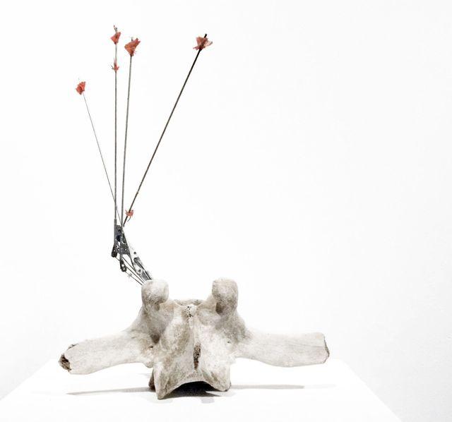 , 'Palo,' 2010, Jason McCoy Gallery