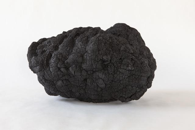 , 'Flower of tan, Black,' 2018, Berg Gallery