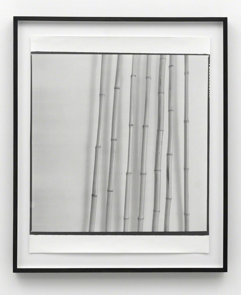Sigmar Polke Ohne Titel (Bambus), 1968-1969/1990 Gelatin silver print Unique 60.5 x 50 cm / 23 3/4 x 19 2/3 in Framed: 71 x 60 x 4 cm