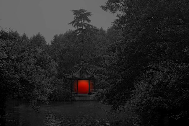Shen Wei 沈玮, 'Pavilion', 2017, Flowers