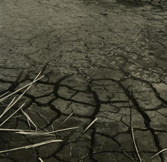 , 'Mudflats (2 of 2) #3965,' Circa 1950, Candela Gallery