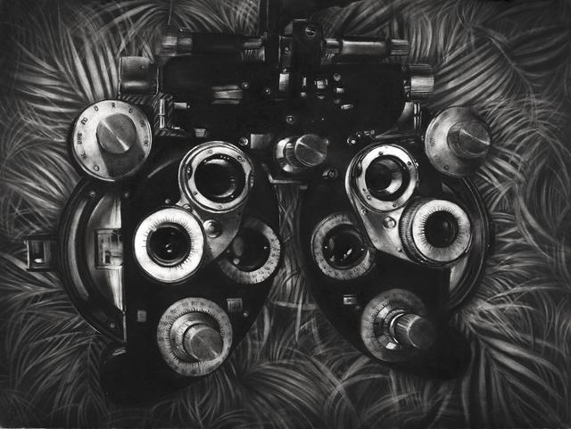 Gonzalo Fuenmayor, 'Tropical Myopia', 2014, Dot Fiftyone Gallery