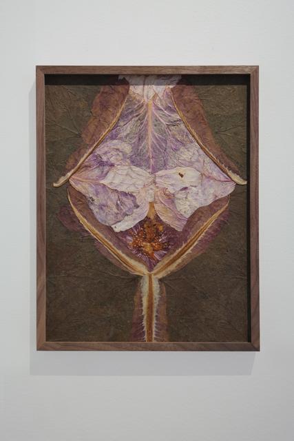 , 'Amarita ,' 2019, Cecilia Hillström Gallery