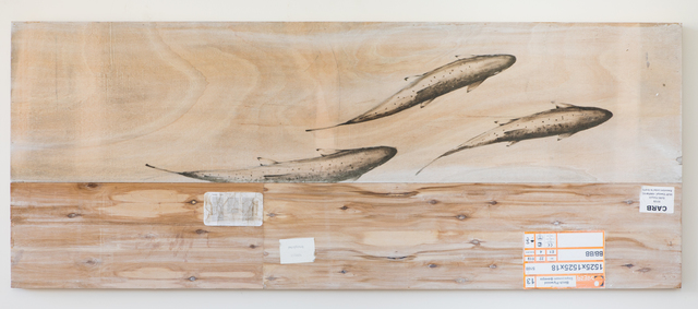, 'EDNA: Salmo salar (Atlantic Salmon) #2,' 2018, Mark Moore Fine Art