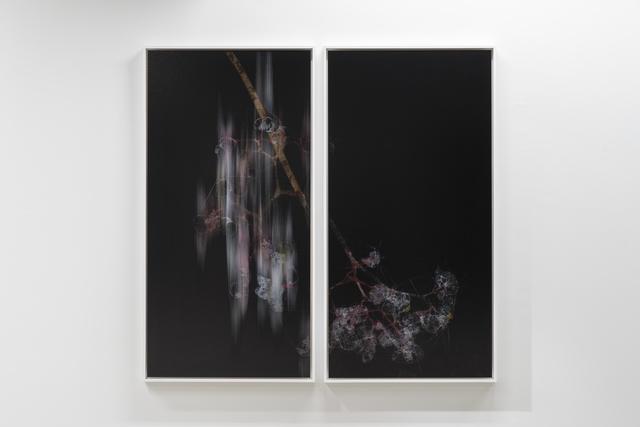 , 'lttrans #4,' 2018, Takuro Someya Contemporary Art