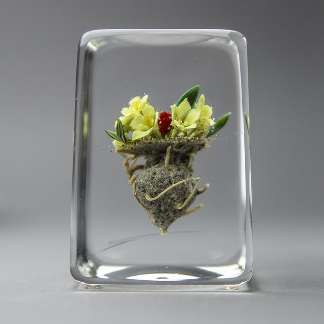 Paul Stankard, 'Glass Paperweight Fine Art Blossoming White Lillys —signed 90'', 1990, Modern Artifact