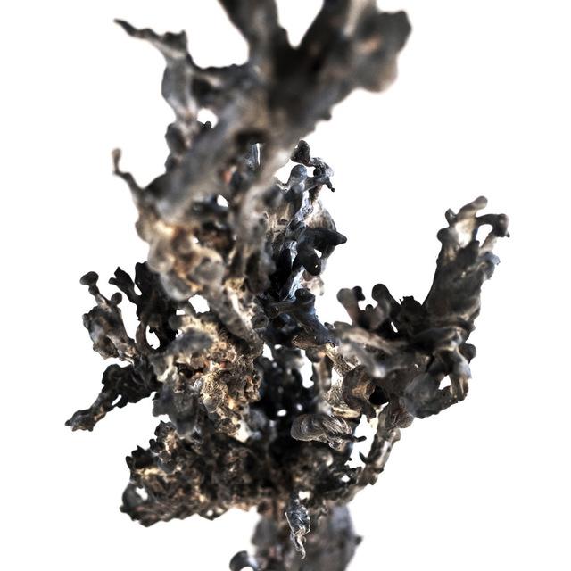 , 'Untitled,' 2018, Berg Gallery