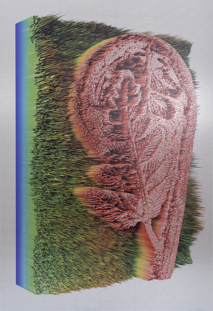 , 'Polypodium aspidiae,' 2015, Future Gallery