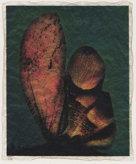 Gregor Törzs, 'Wing Wing Couleur No. 7', Bernheimer Fine Art