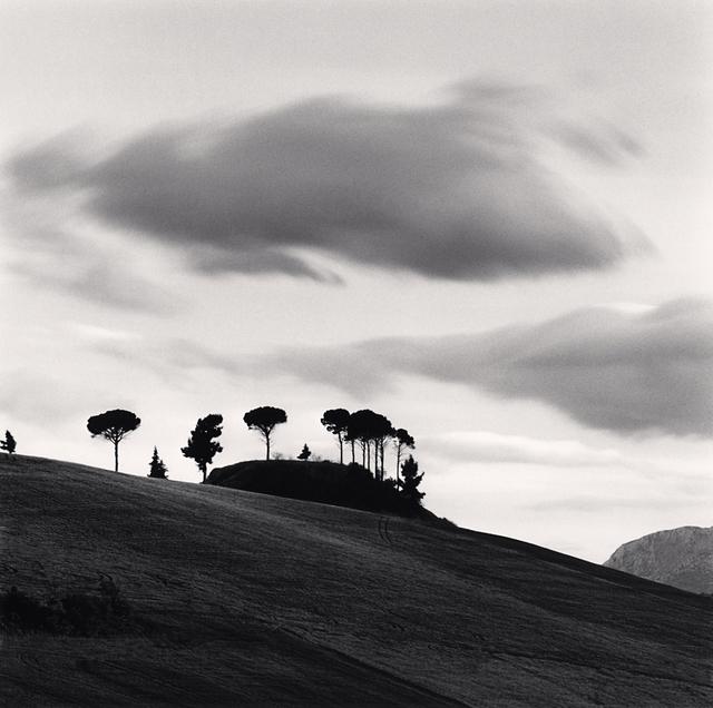 , 'Pine Tree at Dusk, Loreto, Aprutino, Abruzzo, Italy,' 2016, G. Gibson Gallery