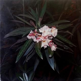 , 'Nerium Oleander,' , Sala Parés