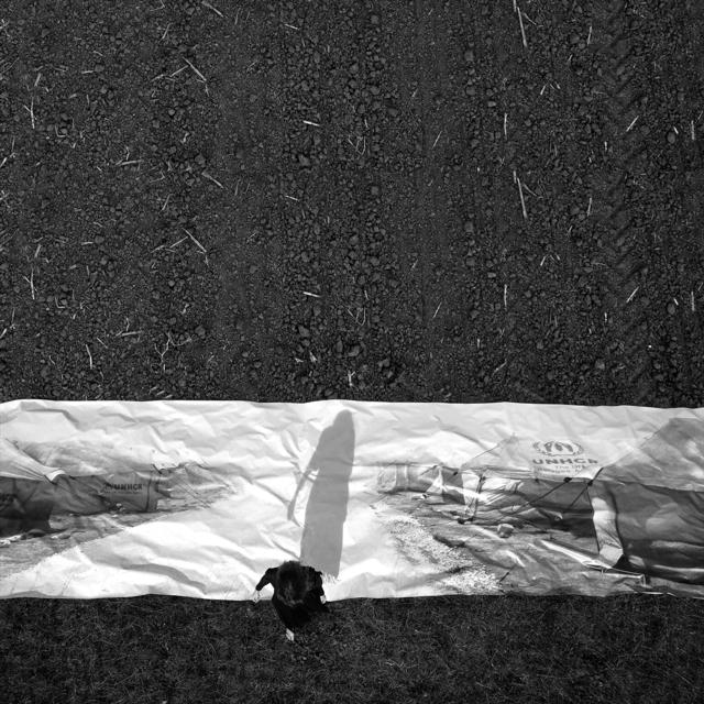 , 'Rituales of identity-serie,' 2014, Aninat Galeria