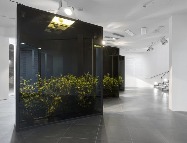 Hicham Berrada, 'Mesk-ellil', 2015, Sculpture, Frankfurter Kunstverein