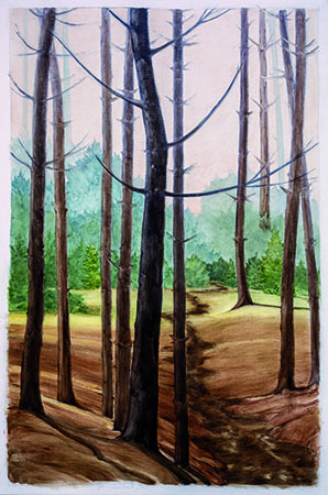 , 'Cathedral Woods, Mohegan,' , Pucker Gallery