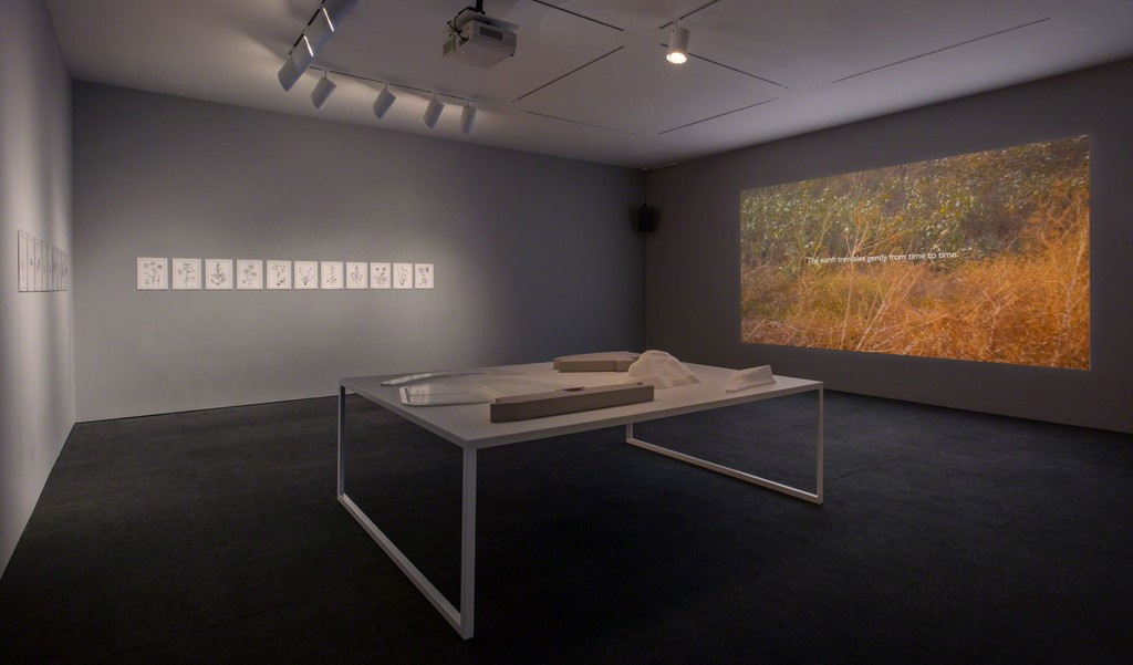 Installation view, Hammer Museum, Los Angeles, September 17, 2016–January 8, 2017. Photo: Brian Forrest