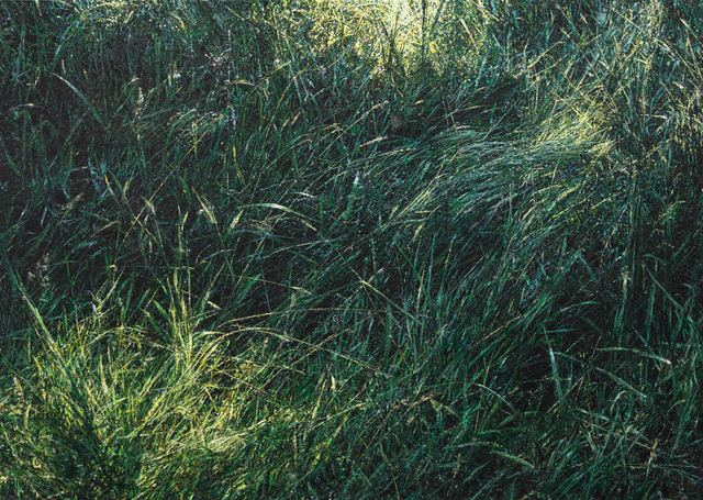 , 'Gras,' 2017, Galerie Thomas Fuchs