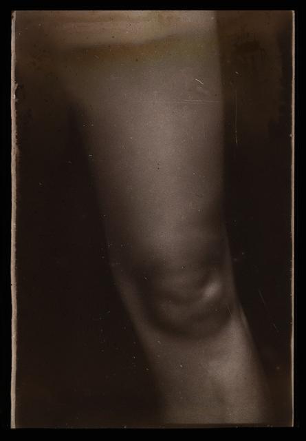 , 'Perna [Leg],' 2017, Casa Triângulo