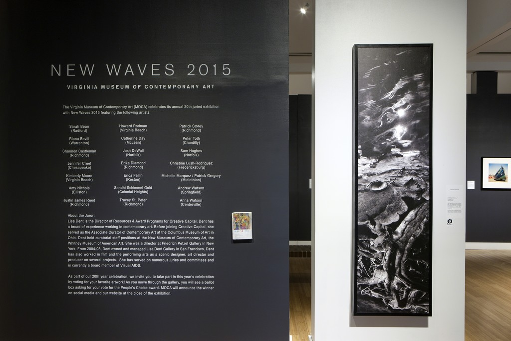 New Waves 2015, Installation View. Photograph by Glen McClure
