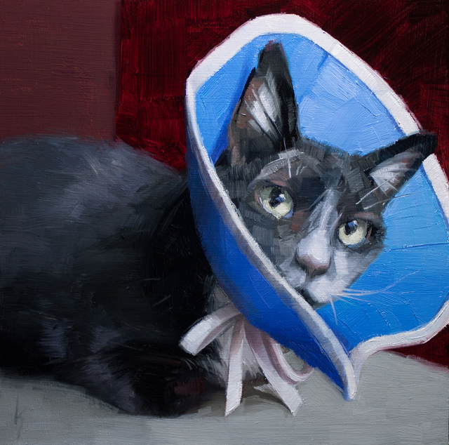 Kirsten Savage, 'Cone of Shame', 2019, Painting, Oil on panel, Abend Gallery