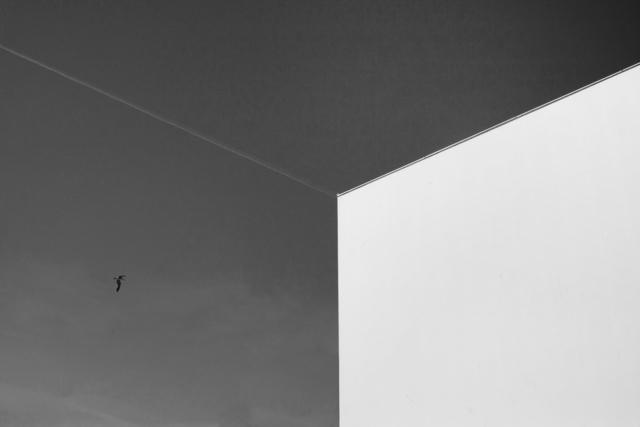 , '001,' 2014, Honos Art