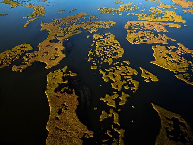 , 'Elmer's Island, A view of an eroding salt marsh, Jefferson Parish, Louisiana, 6/19/2014,' 2014, A Gallery for Fine Photography