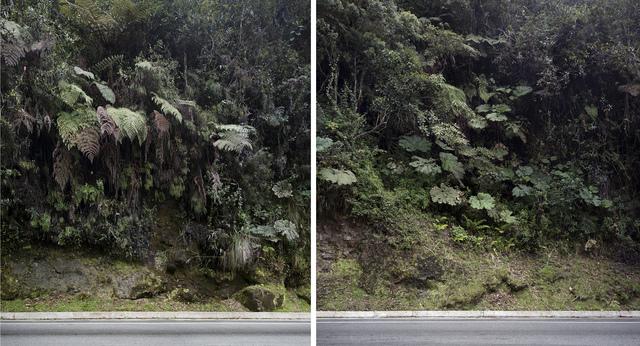 , 'Walls,' 2016, Juan Silió
