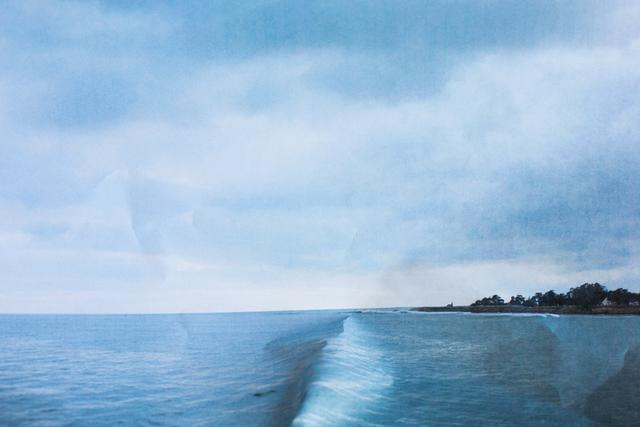 Laura Plageman, 'Cowells (Study No. 1)', 2013, De Soto Gallery